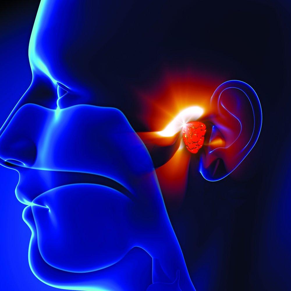 Hearing Loss Symtpoms ENT Specialty Care Goshen NY 10924